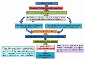 Samprapti Of Ashmari  Pathogenesis Of Urinary Stone