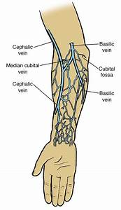 Heroin  Help I Think One Of My Veins Collasped What Do I Do