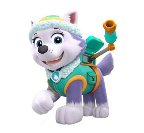 everest paw patrol wiki fandom powered  wikia
