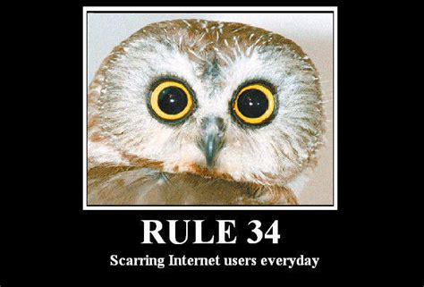 Rule 34 Memes - sheik rule 34 memes