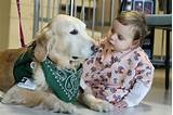 Service Dogs In Hospitals Pictures