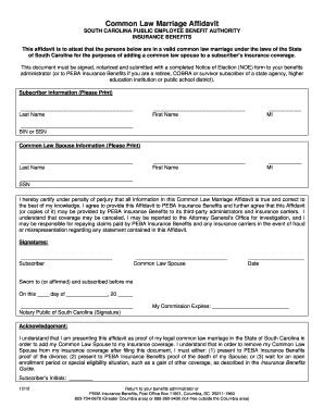 south carolina marriage license form affidavit of marriage by common law forms and templates
