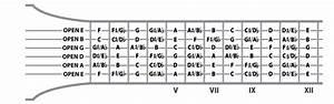 Beginner U0026 39 S Guide To Guitar Strings Notes - Blog