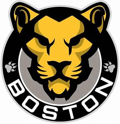 Boston Pride Nwhl Hockey Sportslogos Bruins Whitecaps
