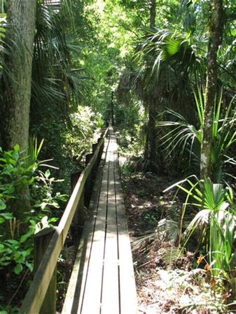 Hammocks State Park Reviews by Highlands Hammock State Park Sebring 2019 All You Need