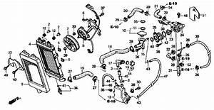 2005 Honda Vtx 1300 Wiring Diagram