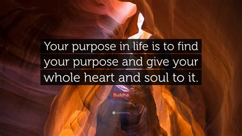 """I've personally gone through hundreds of buddha quotes to pick out thousands of candles can be lit from a single candle, and the life of the candle will not be shortened. Buddha Quote: """"Your purpose in life is to find your purpose and give your whole heart and soul ..."""