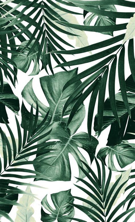 tropical jungle leaves pattern  tropical decor art