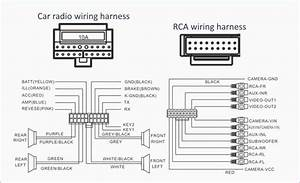 2003 Honda Civic Radio Wiring Diagram Download