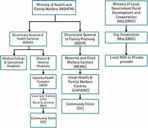 2 Health Service Delivery Organizational Structure In