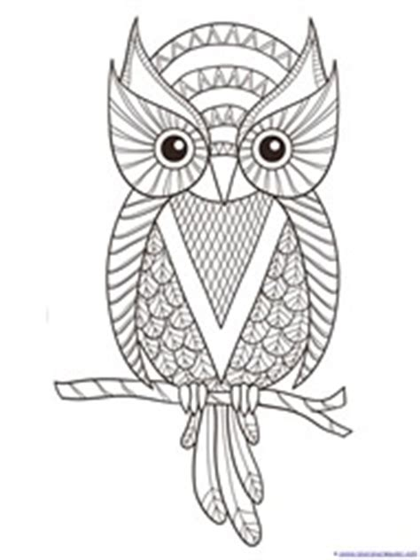 color owl coloring printables