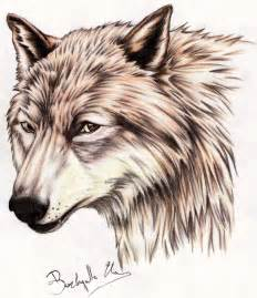 Twilight Jacobs Black Wolf Drawings