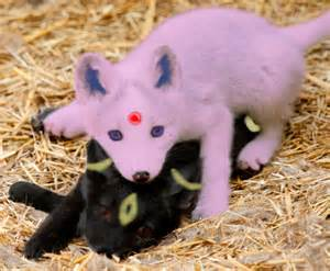Realistic Umbreon and Espeon