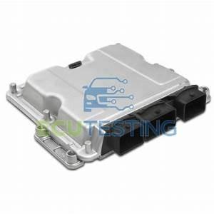 Citroen Xsara Picasso 2 0 Hdi Ecu  Engine Management    0281011084