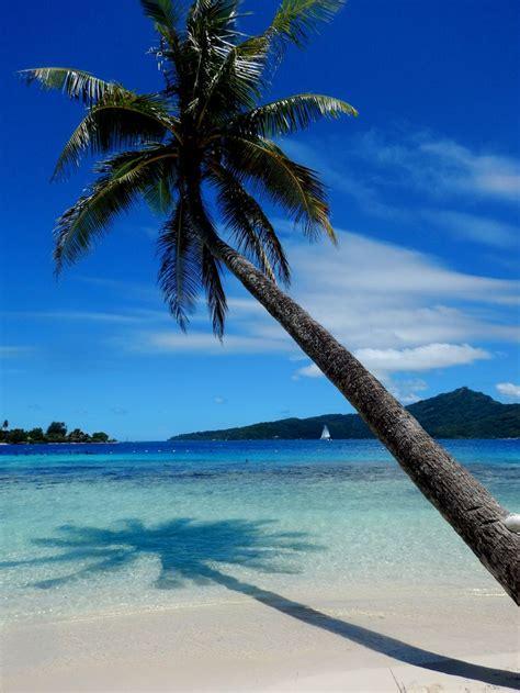 31 Best Tahitibora Bora Nov 2017 Images On Pinterest