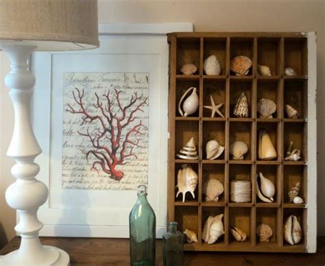 how to display shells ideas 25 best ideas about seashell display on pinterest display sea shells seashell projects and