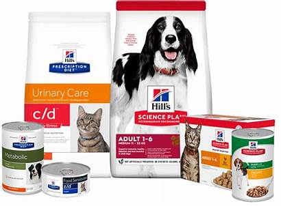 Pet Hill Nutrition Hills Hillspet Dog Cat