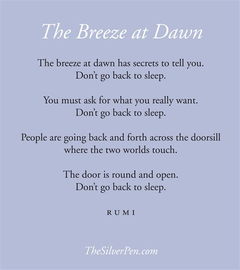 Rumi Poetry by The At Rumi