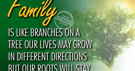 family quotes  sayings collection boy banat