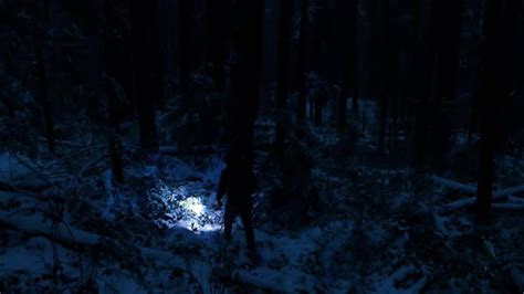 man  torch  snowy forest  night  rockfordmedia