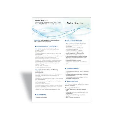 word cv resume templates sales director