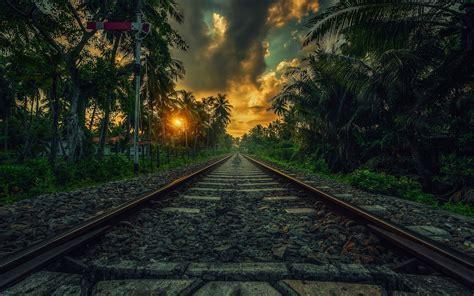nature landscape railway sunset palm trees