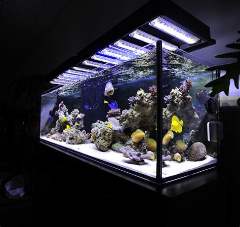 led lighting advances in the aquarium industry china