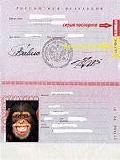 при прописки в паспорте указали неправильно номер дома