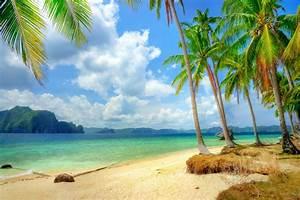 tropical paradise beach coast sea blue emerald ocean palm ...