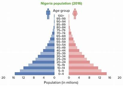 Population Pyramid Nigeria Pyramids Expansive Wide Base