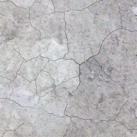 flower wall kabe white cracked concrete wallpaper sc