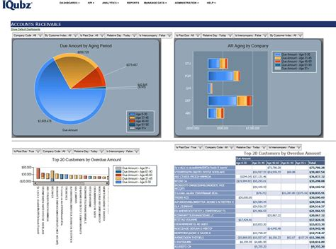 manufacturing bi bi consulting ms crm customization