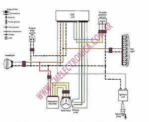 Kawasaki Ltd 450 Wiring Diagram