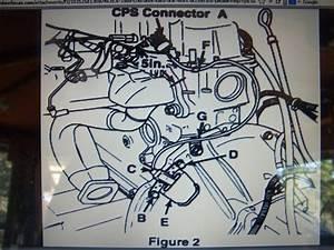 Renix Vacuum Diagram