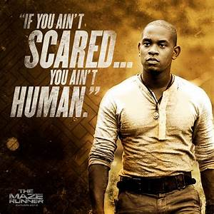Thomas Maze Runner Movie Quotes. QuotesGram