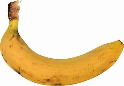 Banana Transparent Onlygfx 1632 1138 Px Resolution