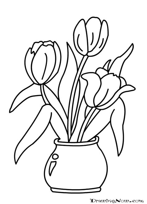 outline pictures of flowers for colouring outline flowers coloring home