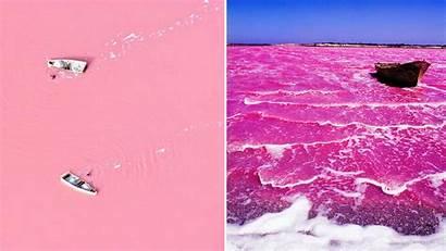 Pink Lake Australia West Water