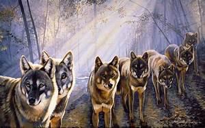 Hd, Wolfpack, Wallpaper