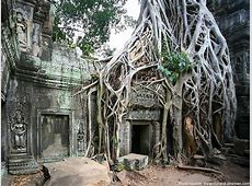 Interesting facts about Angkor Wat Just Fun Facts