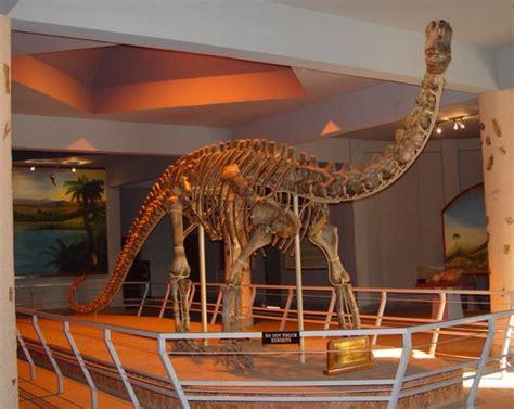 kotasaurus pictures facts dinosaur