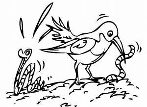 Kostenlose Malvorlage Vgel Vogel Frisst Wrmer Zum Ausmalen