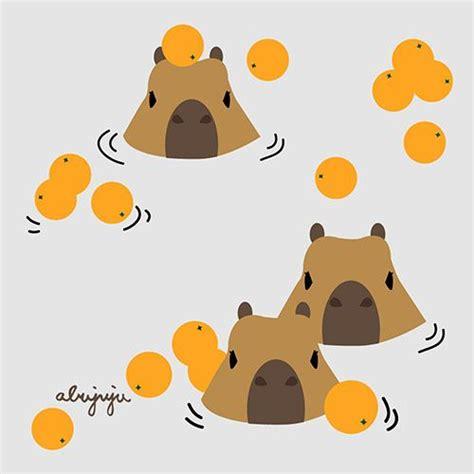 capybara  abujuju