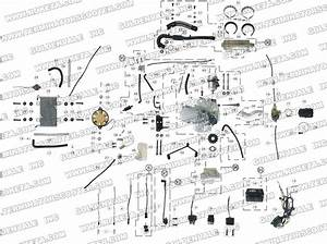 Diagram In Pictures Database  Chinese 150cc Atv Engine