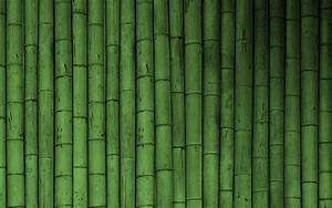Green Bamboo Wallpapers