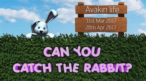 avakin catch rabbit