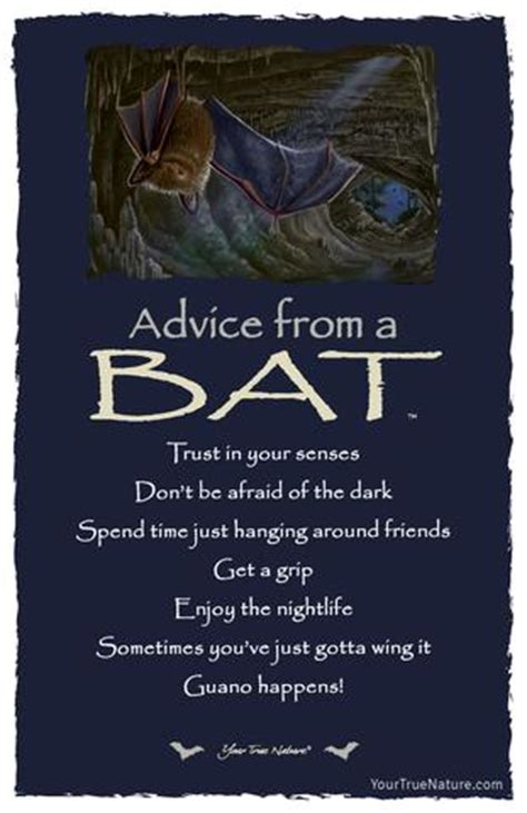 advice   bat frameable art postcard  true