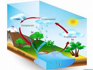 El ciclo del agua (Primaria) Web del maestro