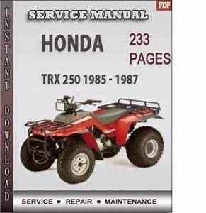 Honda Trx 250 1985