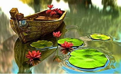 Water Pond Lilies Boat Lily Desktop Pads